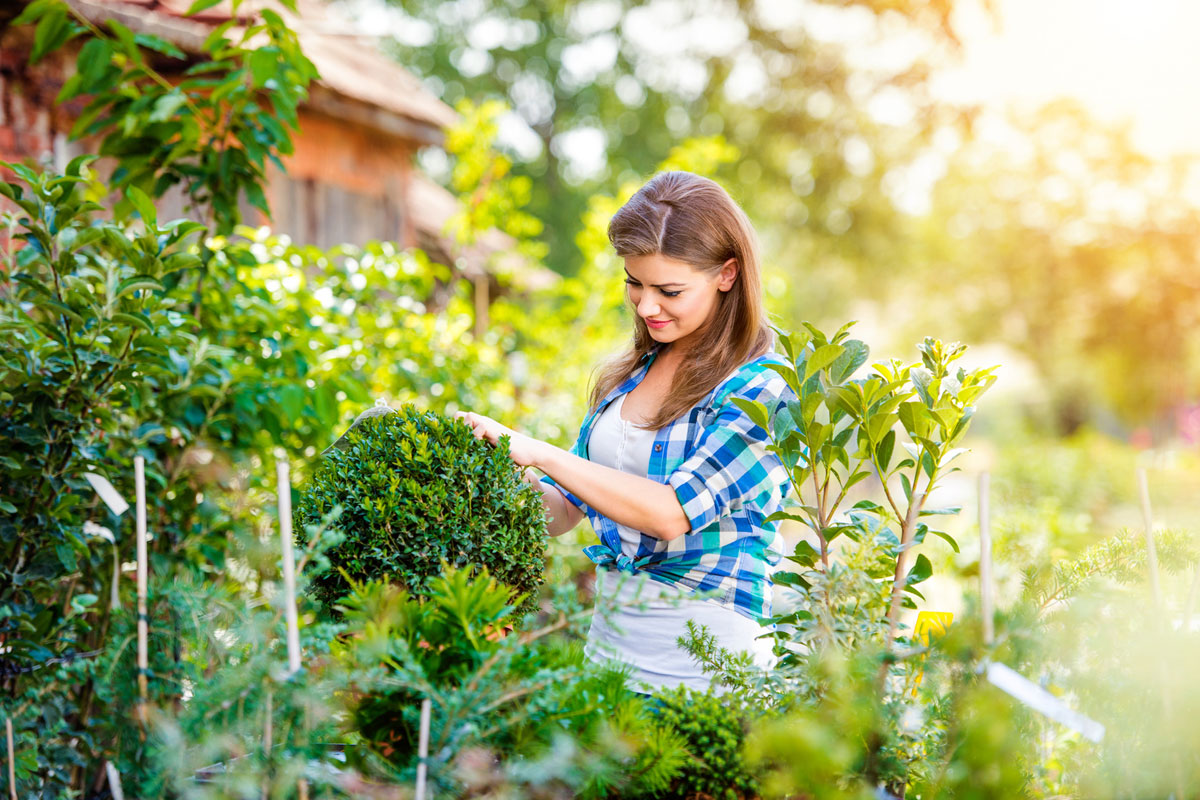 landscaping companies frederick md